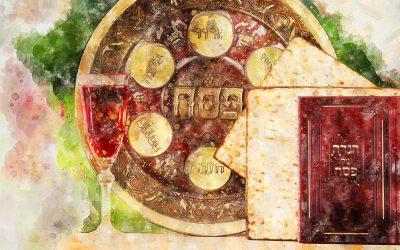 Seder is Coming…